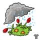 Tulip Shawl Showers