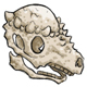 Dome Head Skull