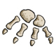 Paw Bones